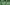 Árvalányhajas zöld küllő
