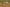 A kaszálások után valóságos madárhadsereg lepi el a kardoskúti pusztát