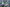Fütyülő récék időznek a Nagy-Zsombékban